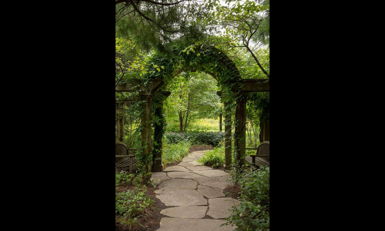 Arched wood arbor with an irregular flagstone path with climbing vines.