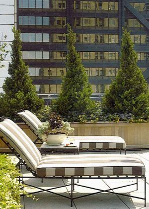 Green roof terrace with built-in planters and casual seating overlooking the Chicago skyline.