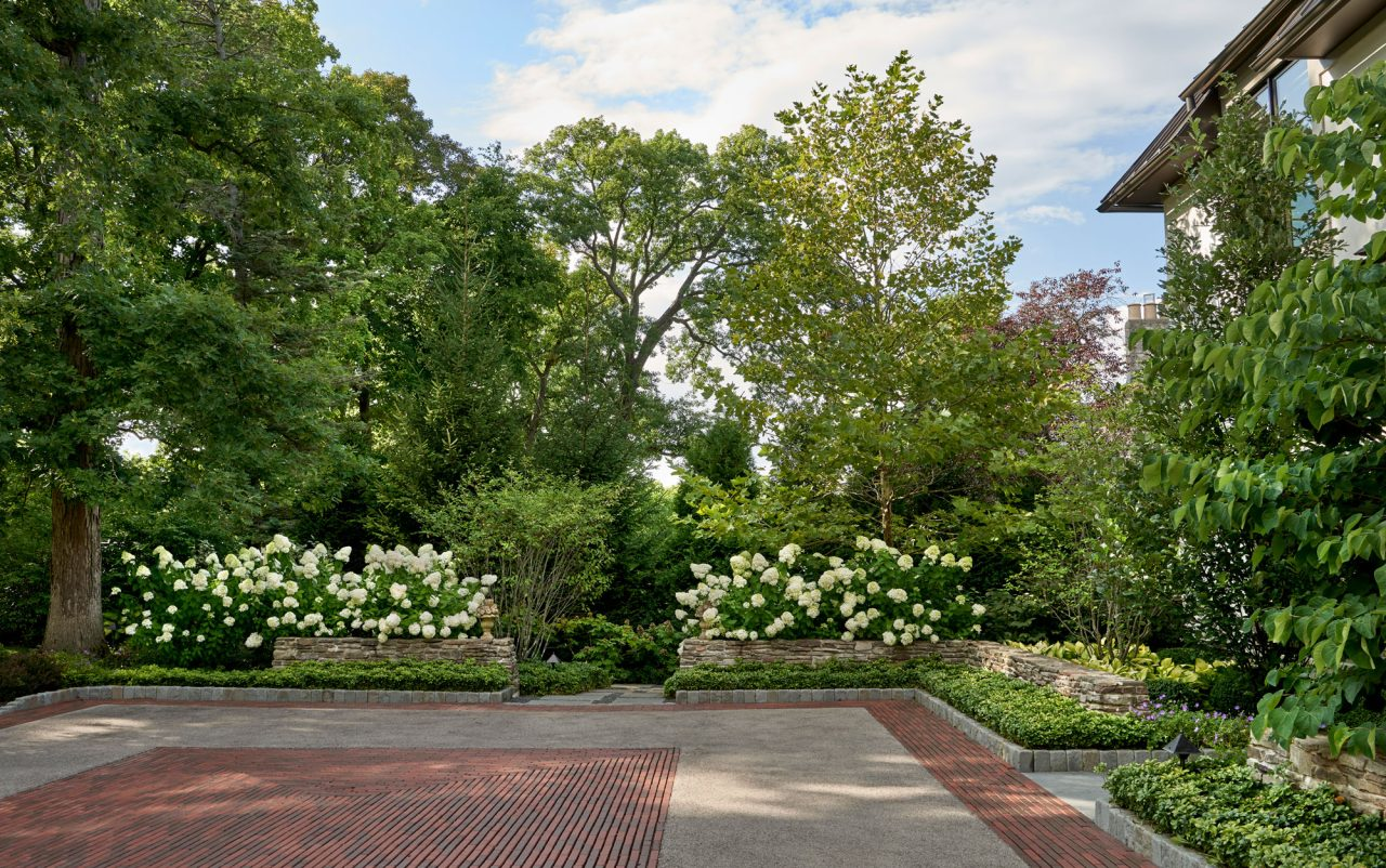 Pattern brick driveway with hydrangeas creating a private screen
