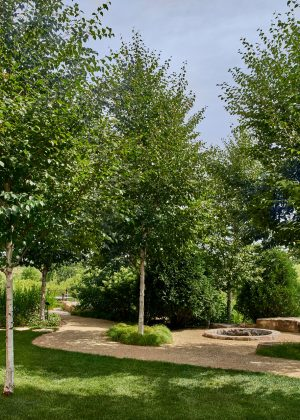 An award winning commercial informal landscape with gravel walking paths leading to a natural stone fire pit.
