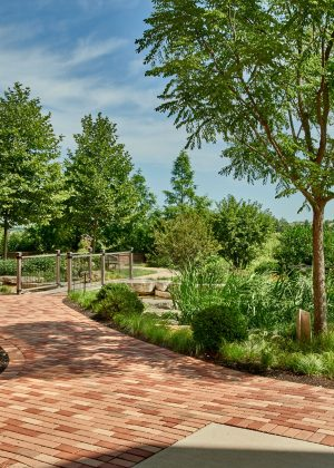 An award winning commercial landscape with an accessible brick walkway leading to various garden destinations.