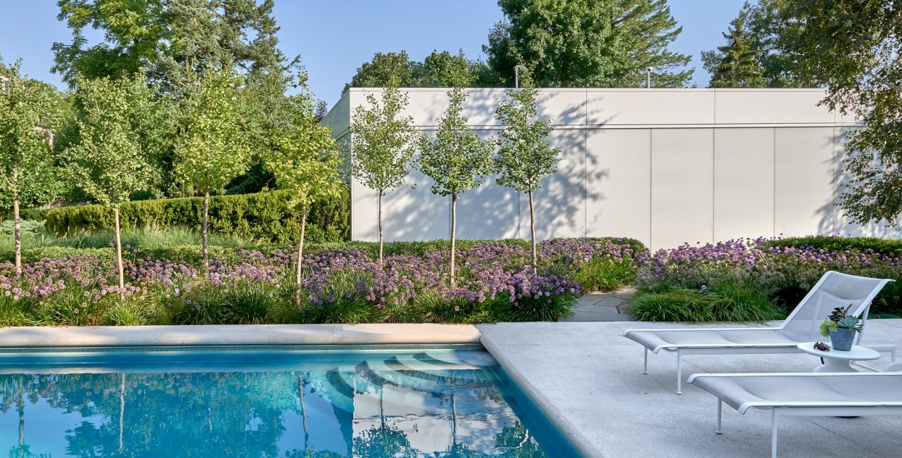 Tranquil pool with a backdrop of ginkgo trees and allium perennials.