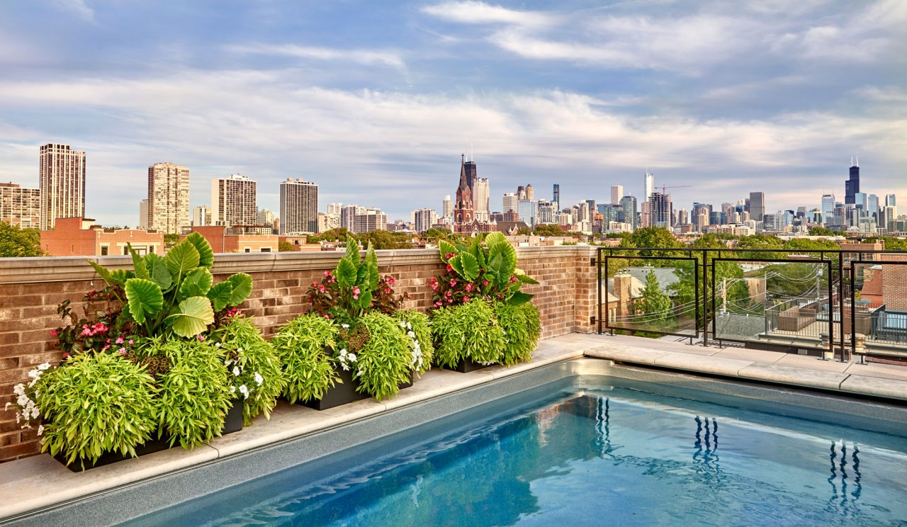 Rooftop garden view of Downtown Chicago over a pool with flowers along the edge.