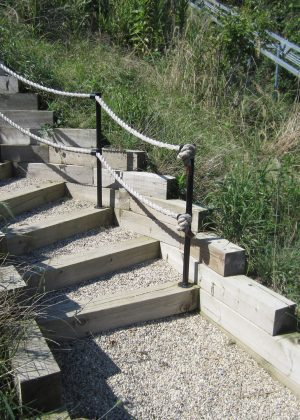 Timber Steps with Rope Railing