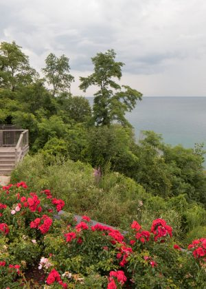 Wooden and stone steps on bluff surrounded by annuals and perenials overlooking Lake Michigan