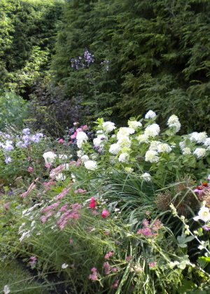 Lush perennial border with white hydrangea, and pink floral accents and sundial accent