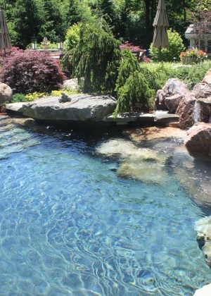 Naturalistic pool with natural waterfall