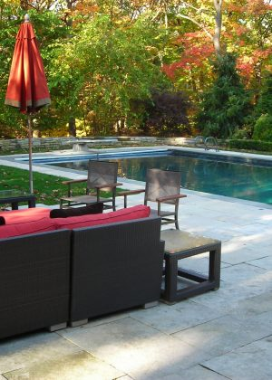 Rectangle pool with basketball net and diving board including additional space for recreational activities