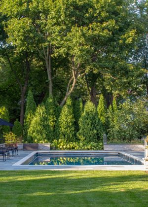 Evergreen screening to seclude pool and paver patio