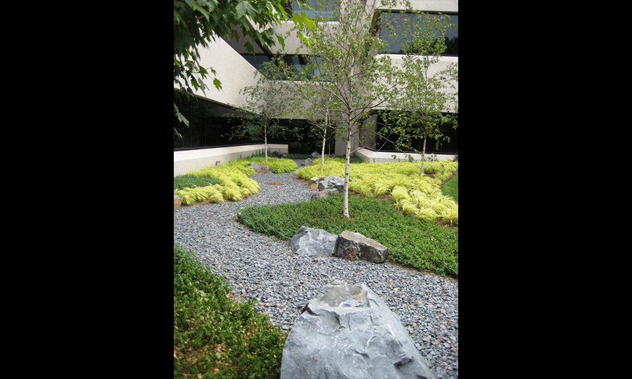 Gravel path that mimics the flow of a river with contrasting plantings