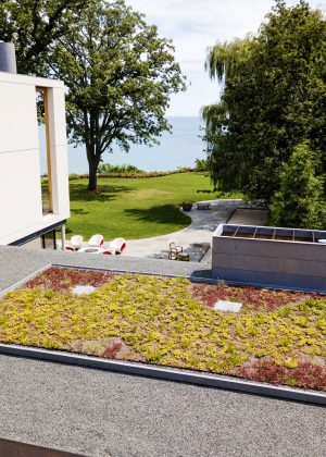 Sedum garden on garage roof overlooking the modern house, lawn, and Lake Michigan in the background.