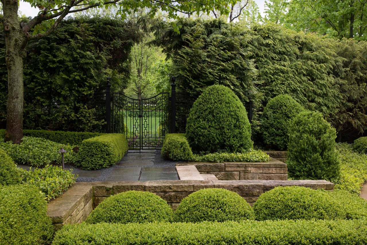 Metal gate with hardscape seat wall surrounded by boxwoods and arborvitae
