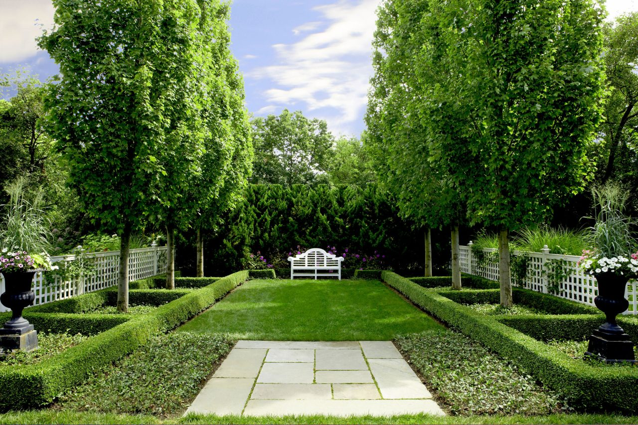 Symmetrical planting leading to wooden bench