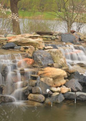 Waterfall feeding pond surrounded by natural landscape