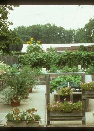 Enabling Garden at Chicago Botanic Garden