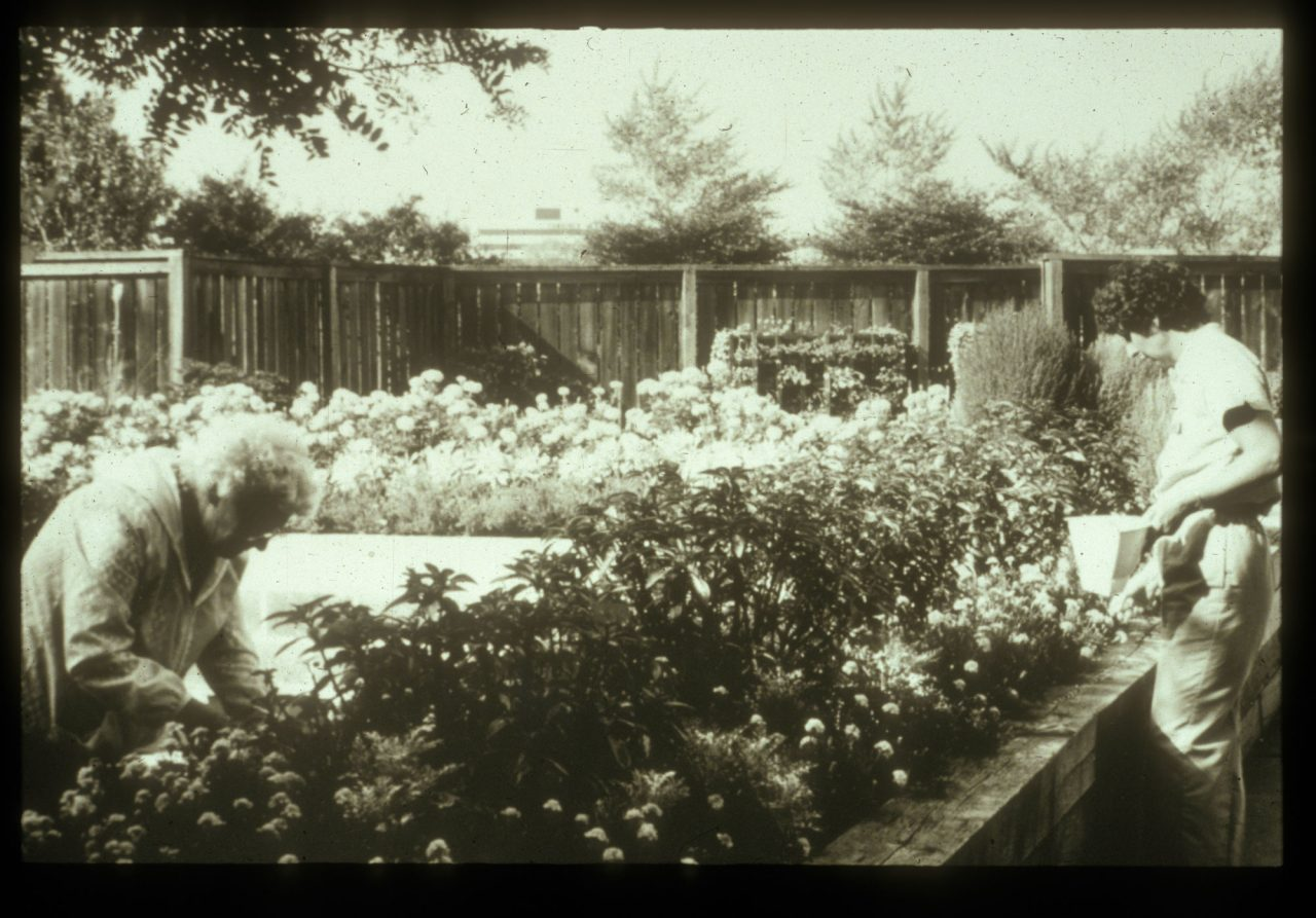 Two women tending to Enabling Garden at Chicago Botanic Garden