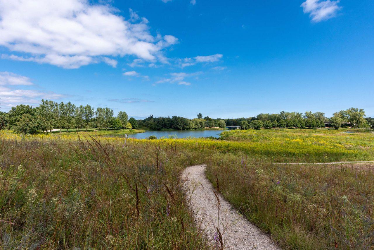 Gravel path through Dixon Prairie at Chicago Botanic Garden with scenic view of pond