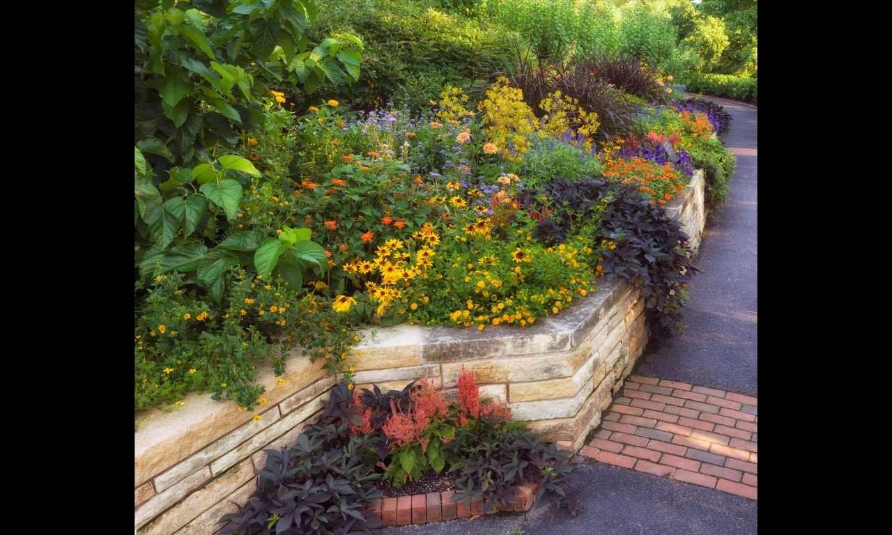 Multi-level flower bed featuring fragrant annuals and perennials in Sensory Garden at Chicago Botanic Garden