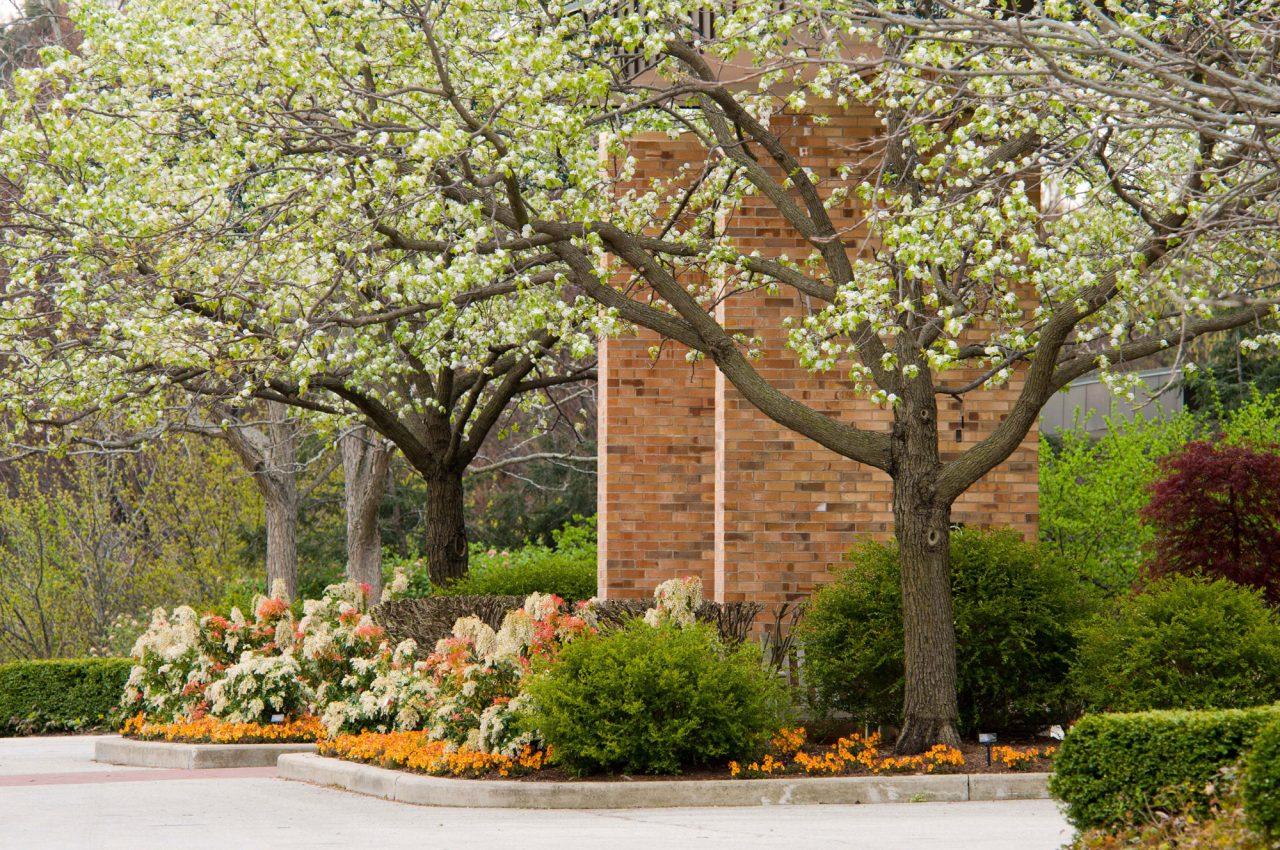 Visitor Center at Chicago Botanic Garden