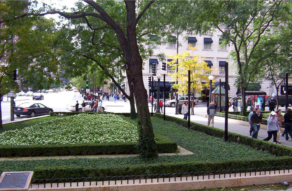 LANDSCAPE AT WATER TOWER PARK, CHICAGO